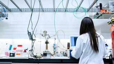 proefdieren - dierproeven - onderzoek - lab - onderzoekslab
