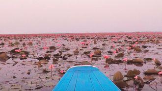 Vlog Reismeisjes: De meest romantische plek in Azië