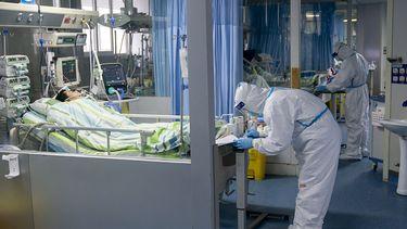 WHO houdt alle opties oorsprong coronavirus open
