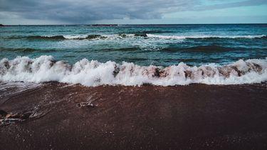 Zee in Egypte