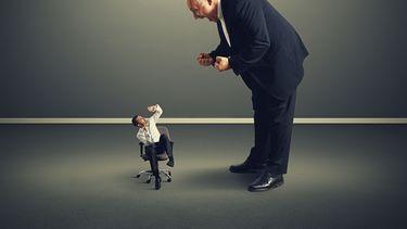 Help, mijn baas is een hork