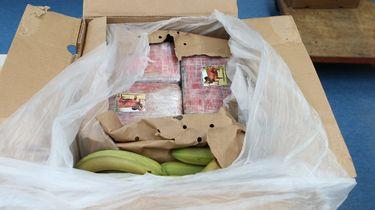 De cocaine werd vervoerd in een container vol bananen. Foto: Politie