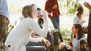 Borrelen op het terras: zo (on)gezond is het