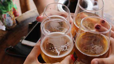 alcoholisme alcohol drinken onderzoek hersencellen brein
