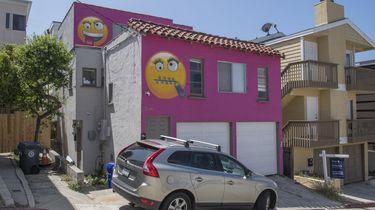 Burenruzie: vrouw verft huis knalroze met emoji's.