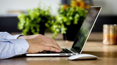 Flinke toename internetgebruik, maar geen reden voor paniek