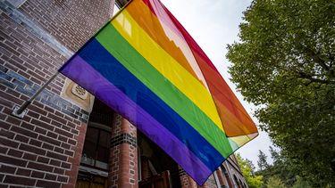 Haarlemse buurt hangt straten vol met regenboogvlaggen