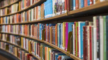Op deze foto zie je een boeken in de bibliotheek.