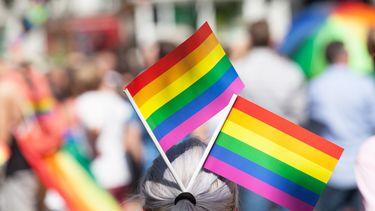Hongarije, wet, homoseksualiteit