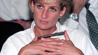 'Docu over Diana kwetsend, zend hem niet uit'