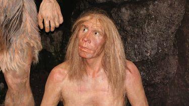 Mensen met Neanderthaler-DNA meer kans op complicaties bij COVID-19