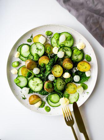 Wat eten we vandaag? Salade met zilverui, krieltjes en tuinbonen