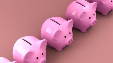 spaarvarkens om in te sparen