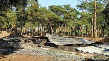 Tien dode dieren na brand Beekse Bergen, vermoedelijk brandstichting