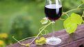 Via pijpleidingen wilden ze de wijn naar debottelarij sturen, maar dat ging niet helemaal volgens plan.