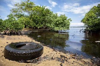 Het water in deze baai ziet zwart van de olie