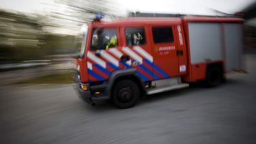 Van Vollenhoven: Koe die 100 kilometer in Maas aflegde niet slachten