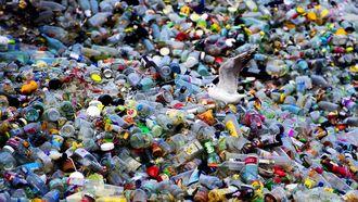 Afval scheiden: supergoed, maar je doet het fout