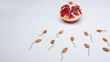 Vuchtbaarheidscrisis onvruchtbaar sperma mannen