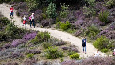 Meer gevaarlijke acties in de natuur: 'Glas of gespannen ijzerdraad op paden'