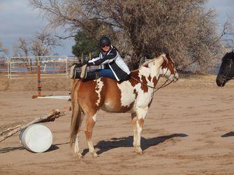 Yoga met paarden gebeurt wereldwijd. Foto: Louis/ Flickr.com
