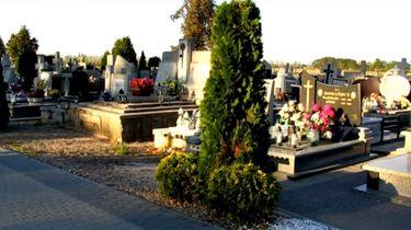Bomen shockeren bezoekers Poolse begraafplaats