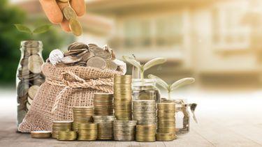 Een foto van spaargeld