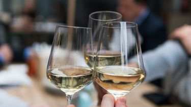 Nederlands, wijn, wijngaarden