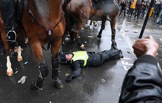 Een foto van een engelse politieagent liggend op de straat naast het paard waar ze van af is gevallen