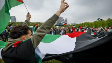 Wilders, Palestina, ISraël, Gaza, pro-Palestijnse betoging