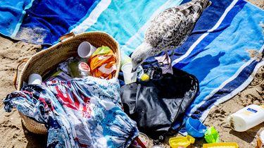 Blikjes en plastic: Vrijwilligers ruimen stranden op