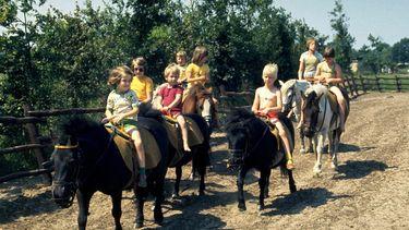 Pony's Slagharen definitief met pensioen