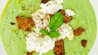 Groene gazpacho met avocado, komkommer, appel & ricotta