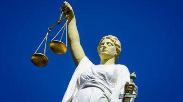 12 jaar en tbs voor Zwolse kruipruimtemoord
