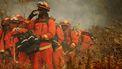 Op deze foto zie je brandweer proberen de natuurbrand genaam 'Apple Fire' vlakbij Beaumont /Californië
