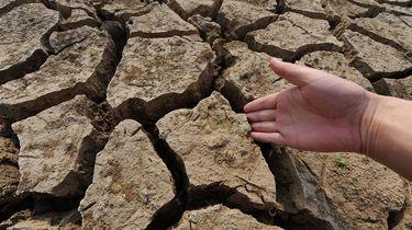 Jaarlijks 8000 klimaatveranderingsdoden in Nederland