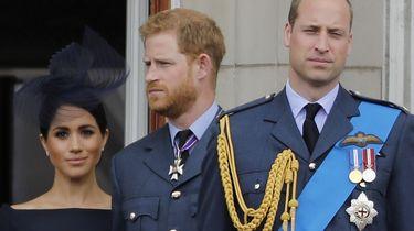 Prinsen Harry en William nemen gezamenlijk afstand van artikel