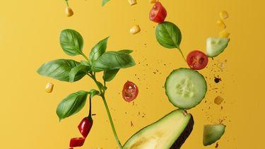 Schijf for Life Schijf van Vijf vegan plantaardig