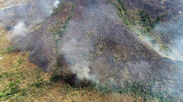 Bolsonaro stuurt leger naar bosbranden in Amazone