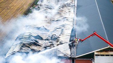 Een luchtfoto van een stal aan de Pannehoeven waar bij een brand ongeveer 4000 varkens om het leven zijn gekomen.