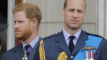 Prinsen in militair uniform