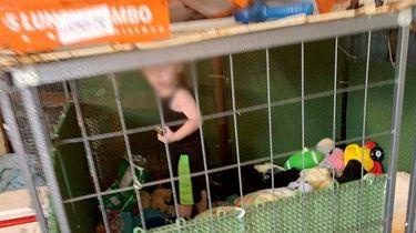 Foto van het kind in het hondenhok