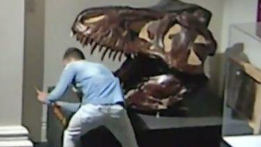 Museuminbreker in Sydney maakt selfies met dino-schedel
